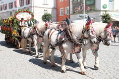 Rosenheim costume parade horse and cart Stock Images