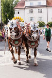 Rosenheim, Germany, 09/04/2016: Harvest festival parade in Rosenheim. Rosenheim, Germany - September 4, 2016: horse team the AuerBräu brewery at Thanksgiving Royalty Free Stock Images