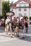 Rosenheim, Germany, 09/04/2016: Harvest festival parade in Rosenheim. Rosenheim, Germany - September 4, 2016: trailer with horses of Flötzinger brewery at Royalty Free Stock Photo