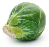 Rosenkohl or Brussels sprout Stock Photography