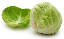 Rosenkohl or Brussels sprout Royalty Free Stock Photos