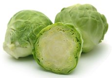 Rosenkohl or Brussels sprout Royalty Free Stock Images