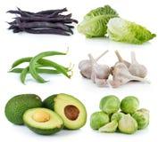 Rosenkohl, Knoblauch, Baby Lattich, grüne Bohnen, purpurrot Stockbilder
