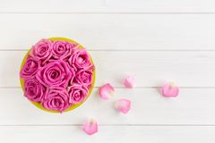 Bouquet of roses in pink on white wooden background royalty free stock photo
