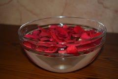 Rosepetals vermelho na bacia enchida água fotografia de stock royalty free