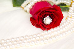 Roses. Beautiful red rose and pearl necklace , lay on white to fur Stock Photography
