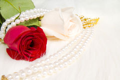 Roses. Two beautiful roses and pearl necklace with gold and brilliants, lay on white to fur Stock Photos