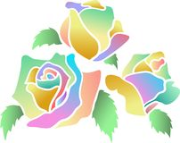 Roses. Colourful roses isolated illustrated image Stock Photos