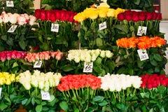Free Roses. Royalty Free Stock Image - 15916456