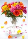 roses Stock Photo