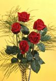 Roses. Red roses in a vase Stock Photo