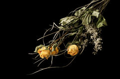 Roses. Bouquet of yellow roses on black background Stock Photo