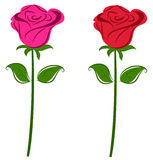 Roses. Illustrations of roses in pink and red Royalty Free Stock Image