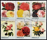 Roses. ANGOLA - CIRCA 2000: Collection stamps shows roses Royalty Free Stock Photography