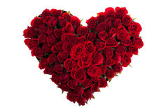 Roses. Red Roses in Love Shape