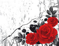 Roses stock illustration