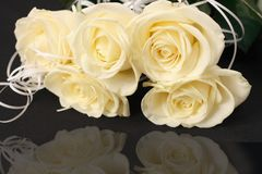 Roses. On a black background Royalty Free Stock Photo