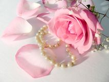 Roses. Rose and pearls different view stock photography
