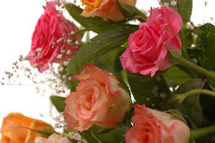 Roses. Bouquet of roses, congratulation birthday, wedding or another occasion Stock Photo