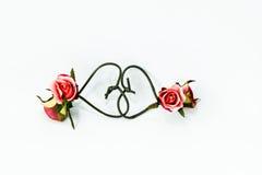 roses Photos stock