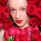 In roses Royalty Free Stock Image