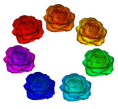 Roses of all colors of the rainbow on a white background. clipart. Roses of all colors of the rainbow on a white background. colors of rainbow. clipart stock image