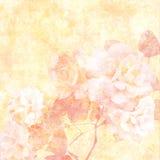 Roses amorties Photos libres de droits