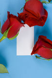 Roses And Note Royalty Free Stock Images