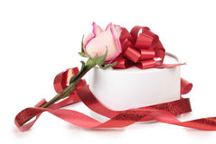 Roses And White Box Stock Images