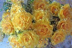 Roses après glace humide Photo libre de droits