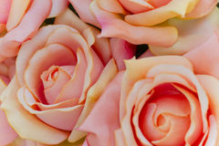 Roses art of cloth Stock Images