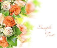 Roses as a background Royalty Free Stock Photos