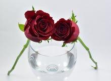 Roses assez rouges, symbole de l'amour et verre de vin Photographie stock