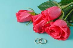 Roses au-dessus de contexte rose brouillé Photographie stock libre de droits