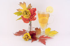 Roses from Autumn Leaves and Tea. Beautiful decoration made from autumn leaves of roses and tea and lemon a white background royalty free stock photo