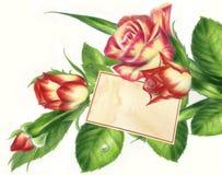 Roses avec l'Empty tag Photographie stock libre de droits