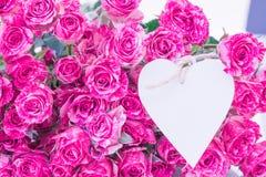 Roses avec la carte de coeur Images libres de droits