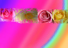 Roses background. Four colored roses design, can be used as a background Stock Images