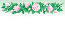 Roses background. Vector Border of  many pink roses and green leaves on abstract background Stock Image