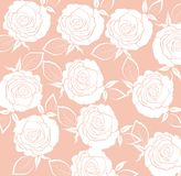 Roses background Royalty Free Stock Image