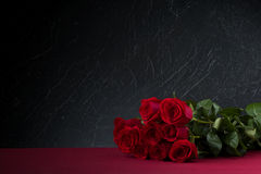 roses background Stock Images
