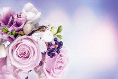 Roses background. Delicate pastel purple and white roses illustration watercolor style Stock Images