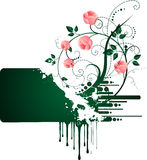 Roses banner. Text place with roses for your business Stock Photos