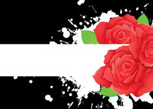 Roses banner on black. Vector illustration Stock Photography