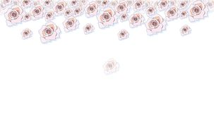 Roses banner on white background, vector illustration stock illustration