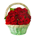 Roses in the Basket. Beautiful Red Roses in the Basket Stock Photography