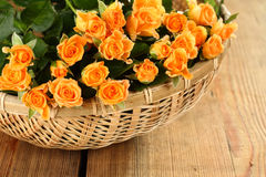 Roses in basket Royalty Free Stock Photo