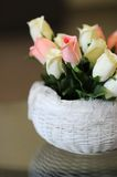 Roses in a basket. Roses in a white basket on a reflective surface Stock Photo