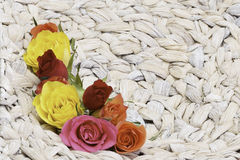Roses in basket. Background with water hyanzinthe and roses Stock Photography