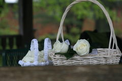Roses in a basket. Flowers in a white basket Stock Image